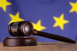 Gavel resting on sound block with european union flag in background.jpeg